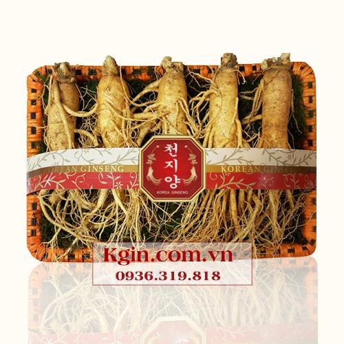 Nhân sâm tươi Hàn Quốc 6 củ/kg